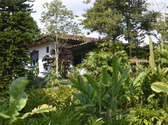 Nature Trips Colombia S.A.S
